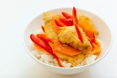 Pollo en el asiático Foto de archivo libre de regalías