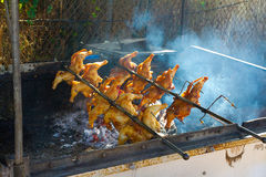 Pollo en el Bbq del Rotisserie Foto de archivo