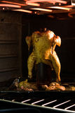 Pollo en horno Imagen de archivo