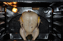 Pollo en una bandeja en el horno fotografía de archivo libre de regalías