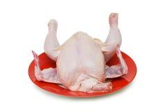 Pollo entero aislado Fotos de archivo libres de regalías