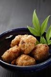 Pollo frito del estilo japonés Foto de archivo libre de regalías