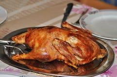Pollo frito en la bandeja Fotos de archivo