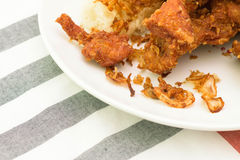 Pollo frito pegajoso del arroz Foto de archivo