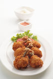Pollo fritto 1 Fotografie Stock