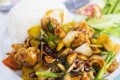 Pollo fritto con la cipolla, l'anacardio ed i peperoncini rossi fotografia stock libera da diritti