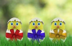 Pollo giallo in un uovo di Pasqua 3d rendono Fotografie Stock