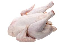 Pollo grezzo immagine stock