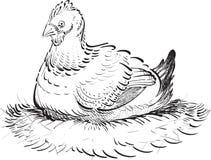 Pollo inchiostrato Fotografie Stock Libere da Diritti