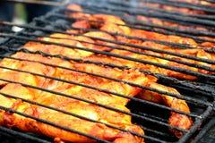 Pollo indiano del bbq Immagine Stock