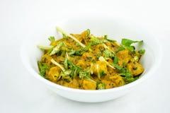 Pollo indiano dell'alimento senz'ossa Immagini Stock Libere da Diritti