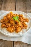 Pollo indio de la mantequilla Fotos de archivo libres de regalías