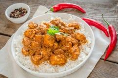 Pollo indio de la mantequilla Imagen de archivo