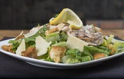 Pollo libero Caesar Salad del glutine sontuoso Fotografia Stock
