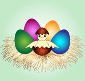 Pollo lindo de Pascua Fotos de archivo libres de regalías