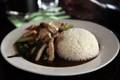 pollo Mescolare-fritto con riso fotografia stock