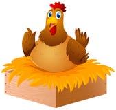 Pollo nel nido Fotografia Stock Libera da Diritti