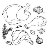 Pollo o parti del corpo della Turchia messe Raccordi, prosciutto, stinco con pelle ed erbe della carne dei gallinacei Isolato su  royalty illustrazione gratis