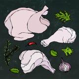 Pollo o parti del corpo della Turchia messe Raccordi, prosciutto, stinco con pelle ed erbe della carne dei gallinacei Su un fondo illustrazione di stock