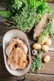 Pollo para cocinar con las especias y las verduras Imagen de archivo libre de regalías