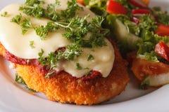 Pollo Parmigiana e macro di verdure dell'insalata orizzontale Immagine Stock