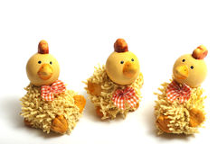 Pollo Pasqua Immagine Stock