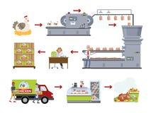 Pollo predeterminato dalla industria illustrazione di stock