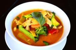 Pollo rosso del curry con latte di cocco Fotografie Stock