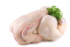 Pollo sin procesar