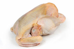 pollo sin procesar Imagen de archivo