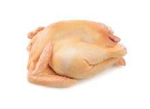 Pollo sin procesar en el fondo blanco foto de archivo