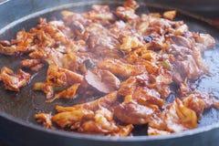 Pollo sofrito coreano con la salsa picante Foto de archivo libre de regalías
