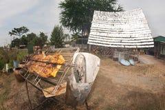 Pollo Solar-asado a la parilla de un vidrio Imagen de archivo libre de regalías