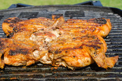 Pollo sotto un mattone con l'insalata di panzanella Fotografie Stock Libere da Diritti