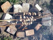 Pollo su fuoco aperto Fotografia Stock