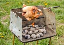 Pollo su una griglia Fotografie Stock