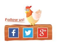Pollo sulle icone di With Social Media del recinto Immagine Stock Libera da Diritti