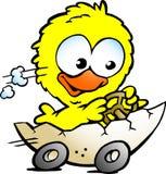 Pollo sveglio del bambino che guida in un guscio d'uovo Fotografia Stock Libera da Diritti