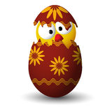 Pollo in un uovo di Pasqua Fotografia Stock Libera da Diritti