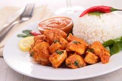 Pollo y arroz del curry Fotos de archivo