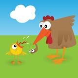 Pollo y gusano Foto de archivo libre de regalías