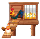 Pollo y polluelos en gallinero libre illustration
