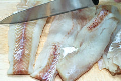 Pollock fish. Prepare pollock tasty fish is found in the northern seas of the Pacific stock images