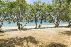 Pollonia Beach. A shady spot on the beach in the village of Pollonia Stock Photos