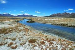 Polloquere-heiße Quellen in Nationalpark Salar de Surires Stockbild