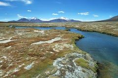 Polloquere hot Springs in Salar de Surire national park Stock Photography