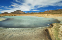 Polloquere hot Springs in Salar de Surire national park Stock Images