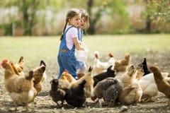 Pollos de alimentación de la niña fotografía de archivo libre de regalías