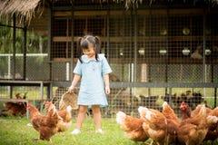 Pollos de alimentación de la niña feliz delante de la granja de pollo fotos de archivo libres de regalías