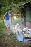 Pollos de la alimentación infantil en el campo Imágenes de archivo libres de regalías